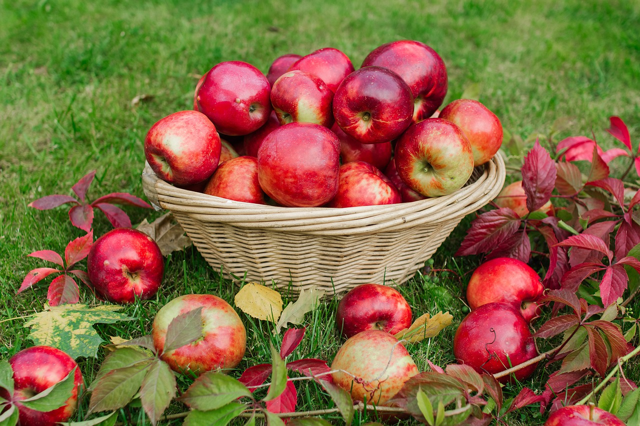 apples-4504611_1280 (c) Pixabay